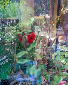 Cobblestone Garden #2 (After Arthur Erickson)
