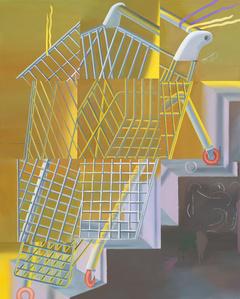 Einkaufswagen eine Treppe herabsteigend