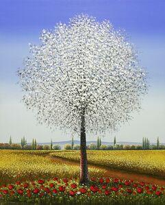 Natural and Wonderful Tree