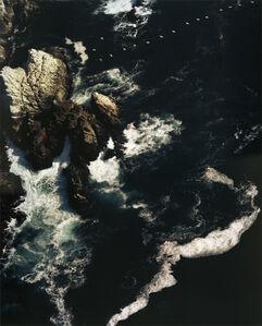 17 Pelicans, Point Lobos