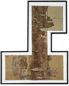 Bark Framed #2
