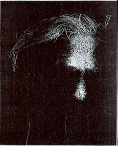 Hoary Head