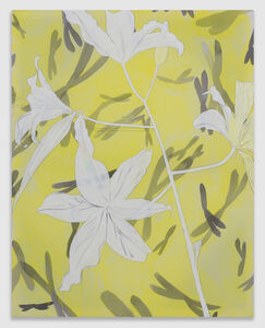 Spectrum (White Flowers)