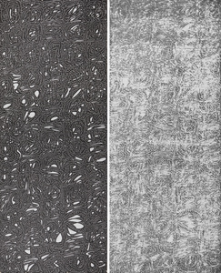 """Wang Duo """"Imitation in Wang Xianzhi · Wang Xizhi's calligraphy"""" (Yin · Yang)"""