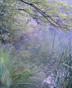 Untitled (Lake 11)