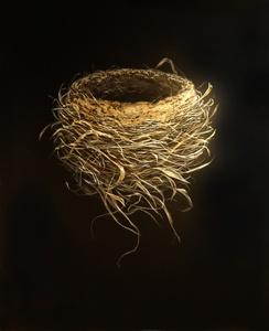 Spring Robin Nest