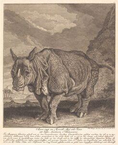 Nashorn Rhinoceros