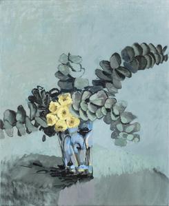 Yellow flowering eucalyptus [2]