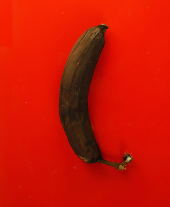 Untitled (banana)