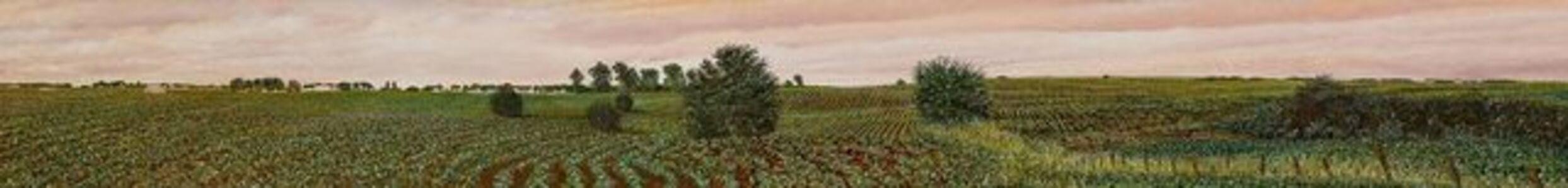 Illinois landscape #93