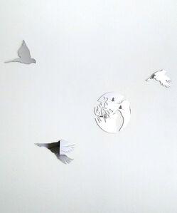 Hole / TransBirds - Redbirds