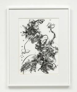 Fiona Rae - Zeichnungen