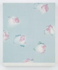 Refresh, Sacrifice, New Hygiene, Home, Washing, Chou Yu-Cheng, Acrylic, Rag, Scouring Pad, Canvas, Image, Album #16