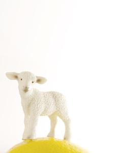 Lemon Lamb