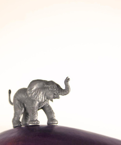 Eggplant the Elephant
