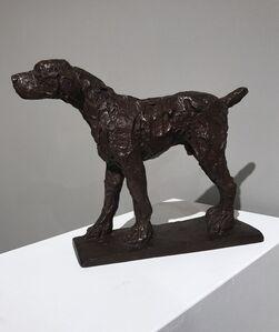 31. Small Dog