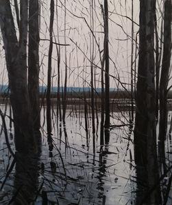 Overflow Lake I