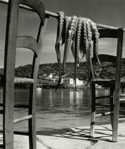 Octopus. Corfu, Greece