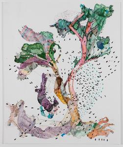 Untitled II (Live Oak)