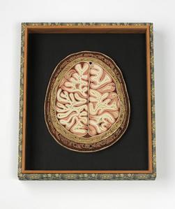 Cranium II