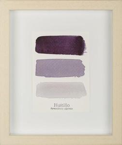 Serie Huitillo III