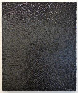 Variation de Mesalina Negra