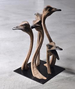Ostrichs' bouquet