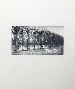 The End (13)