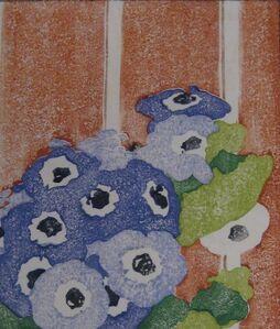Cineraria (Anemones)