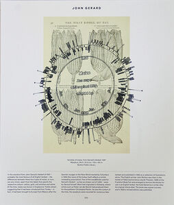 Maize (Leonhart Fuchs: 1543) + Maize Chloroplast DNA