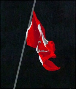 Painted Flag