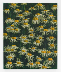 Untitled (Shifted flowers)