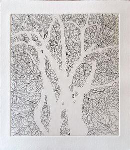 Tree Series: SSA I