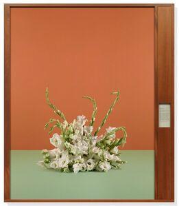 Taryn Simon: Portraits and Surrogates