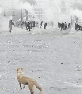 protest: athen 2014