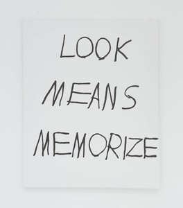 LOOK MEANS MEMORIZE