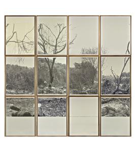 Indented Landscape