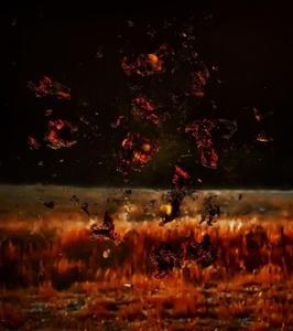 Telltale (Fire 1)