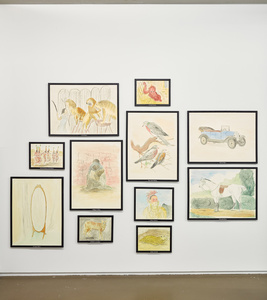 various titles (installation view)