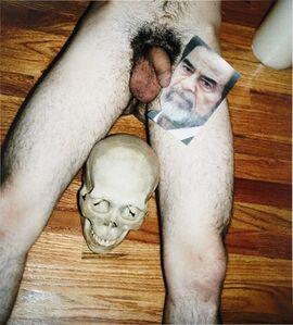 Untitled (Saddam dick)