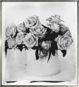 Roses, Overberg II
