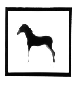 Horse, from The Animals Series