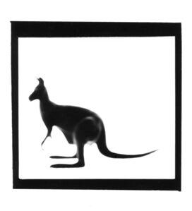 Kangaroo, from The Animals Series