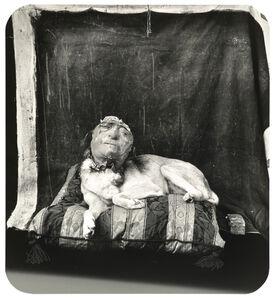 Dog on a Pillow, Marseilles