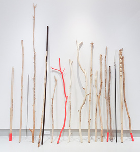 An Array of Walking Sticks