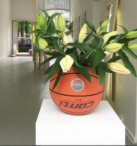 Vase series