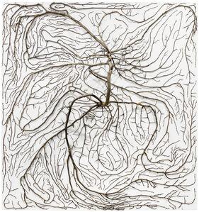 2D Tree (4)