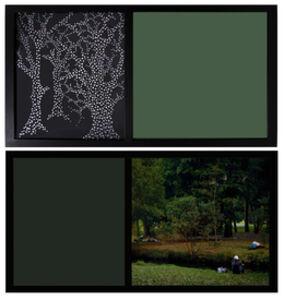 O Jardim - da série Paraíso - Julho de 2010, São Paulo [The Garden - from the series Paradise - July 2010, São Paulo]