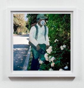 Gardener, Beverly Glen, Bel Air, 2012