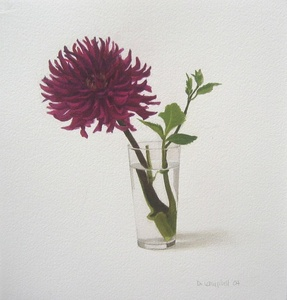 Zinnia in a glass